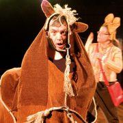Die Reiterin striegelt das Pferd